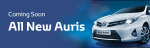 Toyota Auris Fleet